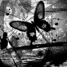 Sonho com borboleta
